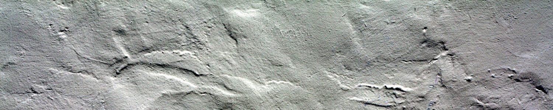 cropped-stucco-bianco-grezzo.jpg